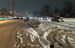 Mỹ: 9 người thiệt mạng vì bão tuyết