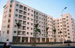 Đà Nẵng tạm dừng tiếp nhận đơn đề nghị thuê căn hộ chung cư