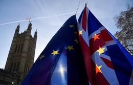 Công ty tài chính Anh đưa ra nhiều biện pháp ứng phó với biến động từ Brexit