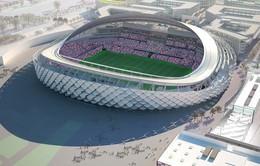 Khám phá sân vận động Hazza Bin Zayed