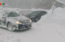 Mỹ: Bão tuyết, mưa lớn khiến ít nhất 5 người thiệt mạng