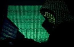 Sốc: Gần 800 triệu tài khoản email bị phát tán trên mạng