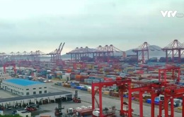 Singapore: Doanh nghiệp nhỏ và vừa sẵn sàng thích nghi với CPTPP