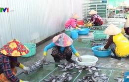 Các làng nghề ở Cà Mau tấp nập chuẩn bị Tết