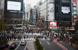 """Nhật Bản triển khai chính sách giúp đỡ thế hệ """"kỷ băng hà việc làm"""""""