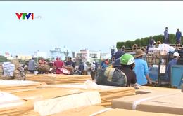 Đảm bảo phương tiện vận chuyển người dân đảo Lý Sơn về quê ăn Tết