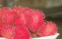 Xuất khẩu chính ngạch - Cơ hội cho trái cây Việt