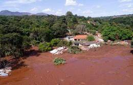 Gia tăng con số thương vong vụ vỡ hồ chứa tại Brazil