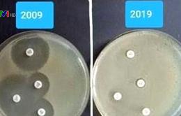 """""""Thử thách 10 năm"""" thể hiện vi khuẩn kháng thuốc tăng"""