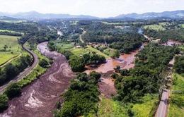 Brazil mở rộng điều tra vụ vỡ đập