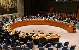 Hội đồng Bảo an họp khẩn về tình hình Venezuela