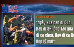 Nhiều người mạnh tay chi tiền triệu mua cá Koi cúng ông Công ông Táo