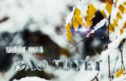 Vượt qua bão tuyết  - Câu chuyện về người Việt ở Đông Âu