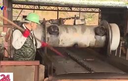 Nhật Bản nghiêm cấm việc vứt bỏ thực phẩm thừa