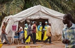 Số người chết do Ebola tại CHDC Congo tăng mạnh trong 10 ngày qua