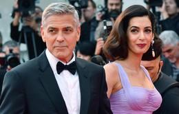 Nhìn lại chuyện tình của cặp đôi quyền lực George Clooney và Amal sau tin đồn rạn nứt