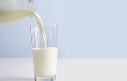 Chế độ ăn lành mạnh không nhất thiết phải có sữa?