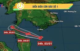Bão số 1 gây gió mạnh ở các vùng biển phía Nam