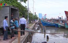 Đưa hàng trăm thuyền viên mắc kẹt trên đảo Hòn Chuối vào bờ