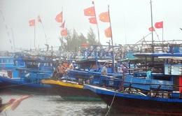 Bão số 1 có thể ảnh hưởng tới 400.000 lao động trên biển
