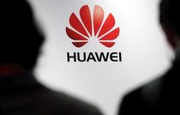 Huawei chuẩn bị kế hoạch ứng phó với lệnh cấm của Mỹ