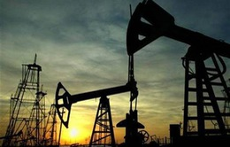 """OPEC cắt giảm sản lượng có cứu được giá """"vàng đen""""?"""