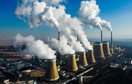 OECD cảnh báo Australia cần nỗ lực giảm khí thải, chống biến đổi khí hậu