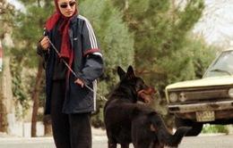 Cấm dắt chó nơi công cộng ở Tehran, Iran