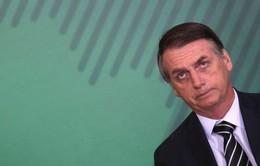 Tổng thống Brazil công bố kế hoạch cải cách kinh tế trên Twitter