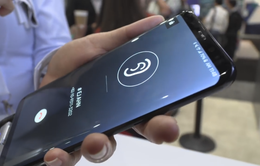 LG G8 có thể được trang bị công nghệ màn hình mới