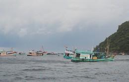 Nhiều tàu cá bị chìm do bão số 1