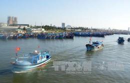 Đà Nẵng dành hơn 100 tỷ đồng hỗ trợ ngư dân
