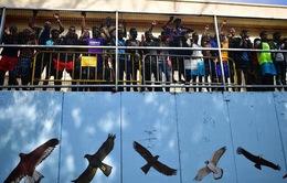 Người di cư bất hợp pháp tới châu Âu thấp nhất trong 5 năm
