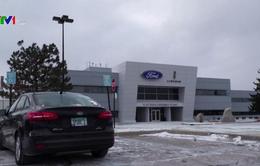 Ford thu hồi gần 1 triệu xe lỗi túi khí