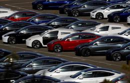 Tesla sẽ bắt đầu chuyển mẫu xe Model 3 cho khách hàng Trung Quốc vào tháng 3