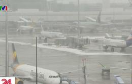 Sân bay Munich (Đức) hủy 120 chuyến bay do tuyết rơi dày