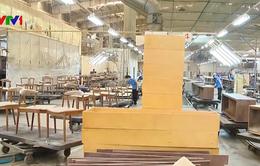 Tăng cường quản lý gỗ và lâm sản hợp pháp