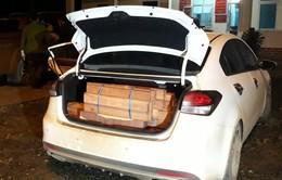 Quảng Trị: Bắt giữ xe ô tô du lịch và xe bán tải chở hơn 1 tấn gỗ lậu