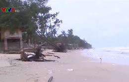 Thừa Thiên Huế: Sạt lở bờ biển ảnh hưởng sản xuất người dân