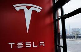 Tesla khởi công nhà máy 5 tỷ USD tại Trung Quốc