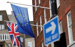 EU thắt chặt quy tắc với các công ty đặt trụ sở tại Anh