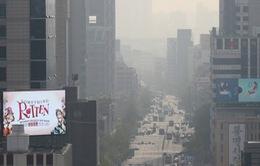 Hàn Quốc lên kế hoạch giảm 20% bụi mịn