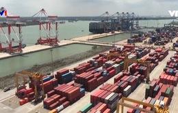 Vẫn còn tồn đọng hàng nghìn container phế liệu tại các cảng biển