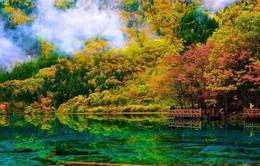 Công viên đẹp như tranh vẽ của Trung Quốc mở cửa trở lại sau 2 năm