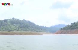 Khôi phục nguồn tài nguyên rừng ở thượng nguồn sông Hương