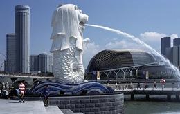 Hé lộ những điều bí mật ít biết về tượng sư tử biển nổi tiếng Singapore