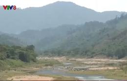 Sông cạn giữa mùa mưa