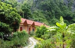 Ninh Bình: Nhiều homestay hoạt động trái phép trong vùng lõi danh thắng Tràng An