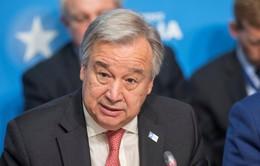 Liên Hợp Quốc kêu gọi chấm dứt chiến sự tại Syria