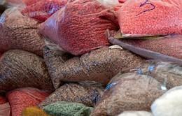 Thái Lan thu giữ lượng lớn ma túy tổng hợp